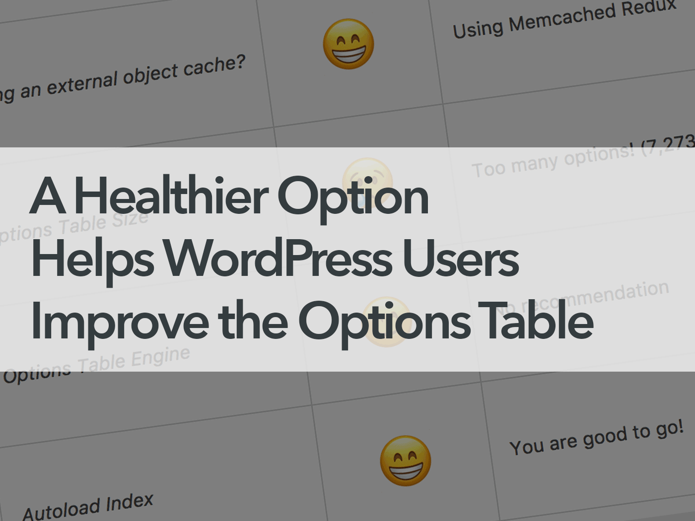 A Healthier Option Helps WordPress Users Improve the Options Table