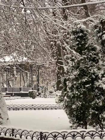 снег в горсаду