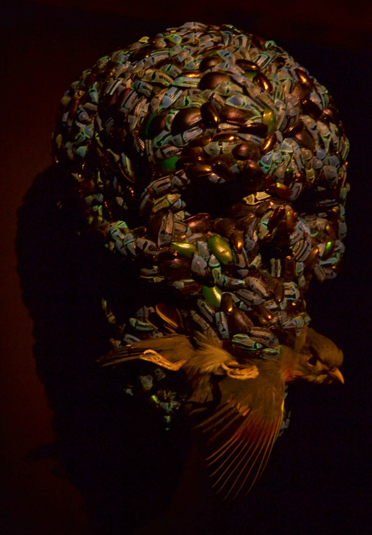 MONA - Escultura hecha de escarabajos.