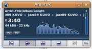 Amarok music player; click to view full-size image.