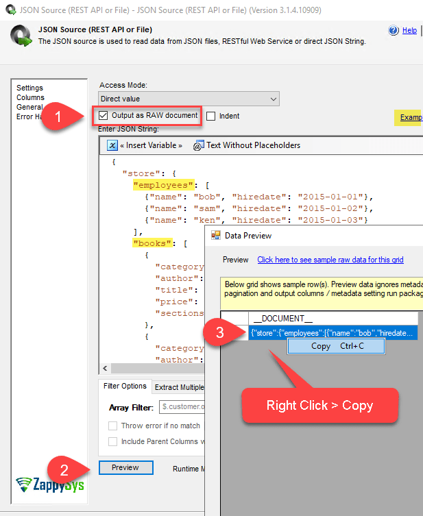 Enable Output As Raw Document Option - SSIS JSON Source