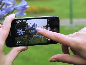 фотографии с iphone