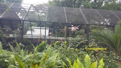 Blog 183 - Singapore - 19