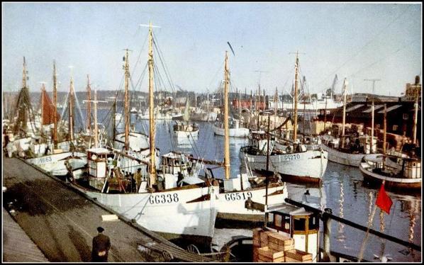 GG 338 och GG 519 i fiskhamnen Göteborg. 1950-talet. Vykort.