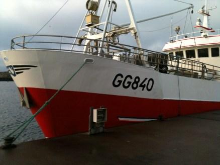 GG 840 Svanen