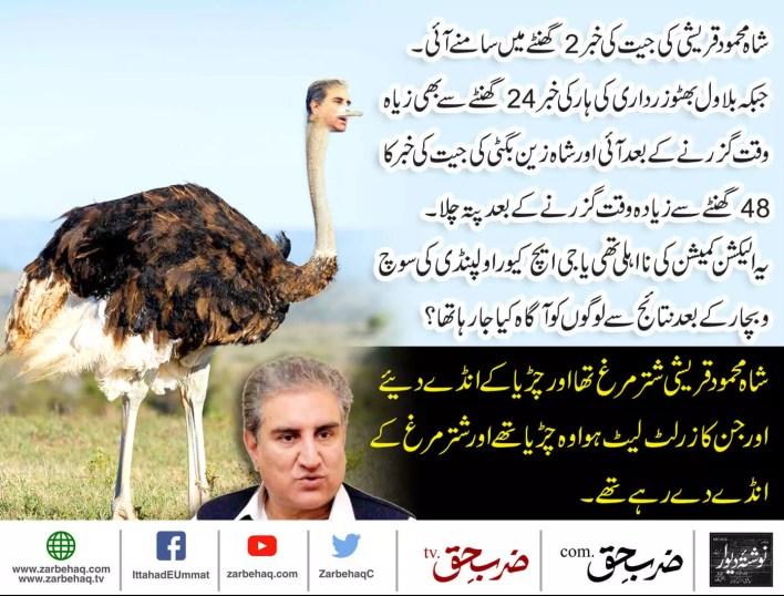 shah-mehmood-qureshi-dawn-news-noon-league-pti-zardari-sohail-warraich-mazhar-abbas-the-party-is-over-imran-khan-wusatullah-khan-mubashir-zaidi-hamid-saeed-kazmi-amir-liaquat-bol-news-altaf-ahmed-2