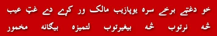 102-manzoor-pashtoon-pashtun-dharna-islamabad-sham-e-ghariban-trailer-truck-shahid-khaqan-abbasi-baloch-sindhi-muhajir-panjabi-nawaz-sharif-joota