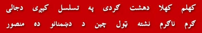 105-manzai-behlol-zai-mehsud-shaman-khail-neuton-einstein-stephen-hawking-shakir-shuja-abadi-president-of-pakistan