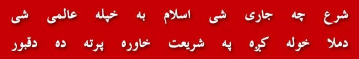 109-naeema-kishwar-jui-pakistani-senator-parliament-house-100attendance-political-parties-women-role-in-politics-teen-talaq-suspension
