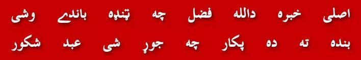 118-pakistan-sazish-mehsood-qaum-imamat-wazeeristan-maqam-manzoor-pashtoon-qayadat-maulana-akram-awan-doctor-tahir-ul-qadri-2