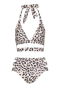 Animal Print Bikini Set by Wolf & Whistle