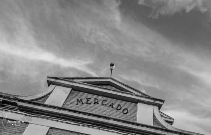 Mercado_Tarancon_Cuenca