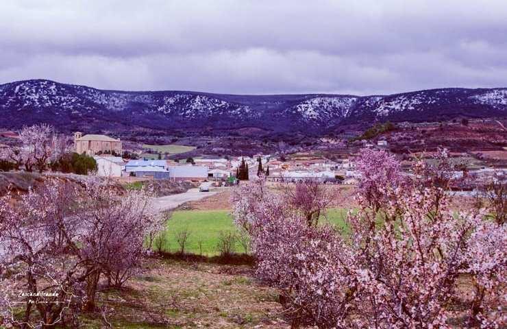 Canalejas del Arroyo nevado y con los almendros en flor