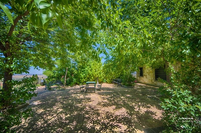 Da gusto pasear por el parque de San Pedro Palmiches