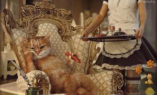 O luksusie 2