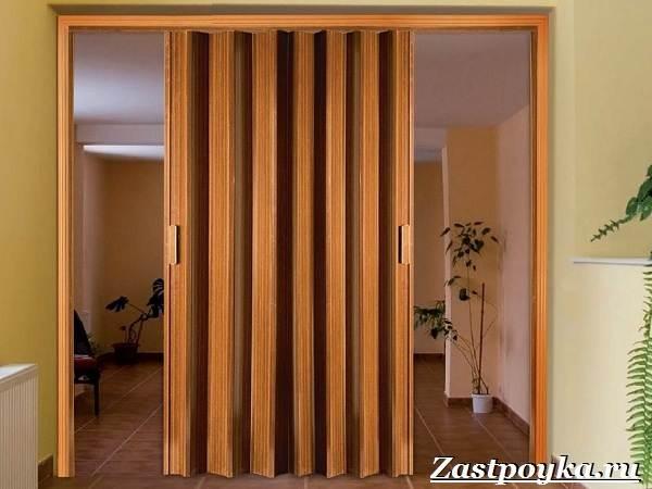 Межкомнатные-двери-гармошка-Описание-виды-и-установка-дверей-гармошка-8