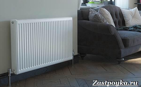 Радиаторы-отопления-Описание-виды-установка-и-цены-радиаторов-отопления-5