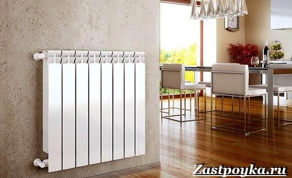 Радиаторы-отопления-Описание-виды-установка-и-цены-радиаторов-отопления-9