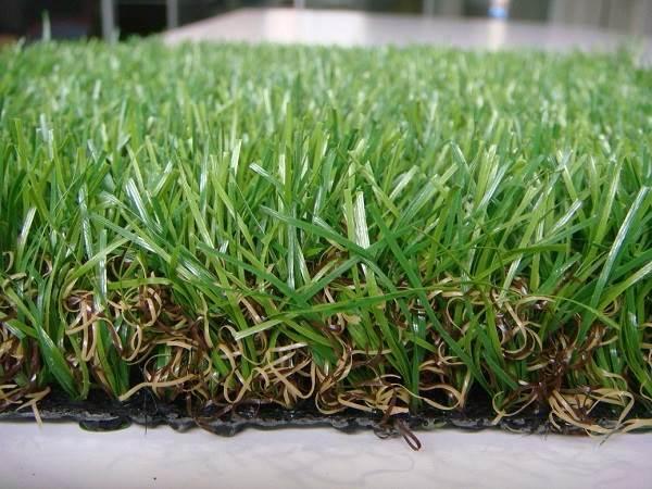 Рулонный-газон-Особенности-виды-укладка-и-цена-рулонного-газона-7