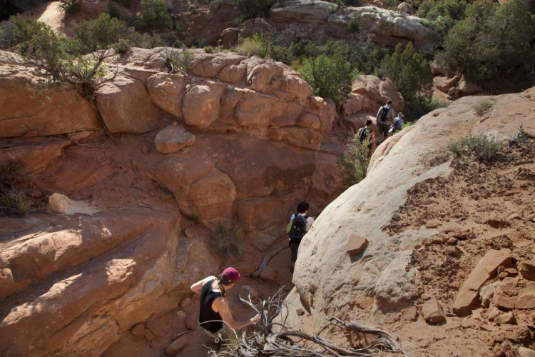 Fiery-Furnace-groupe-trail-2