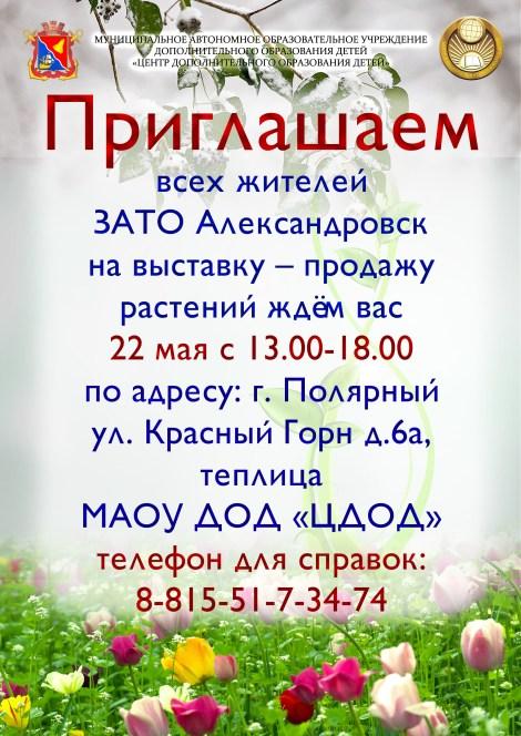 Шабакова