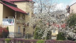 Centrum Korepetycji i Kursów Ewart