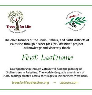 Zatoun Trees for Life certificate