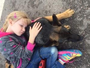 Trained germann Shepherd Puppy sold in Tucson