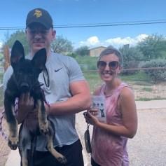 Jessica Candy puppy in El Paso