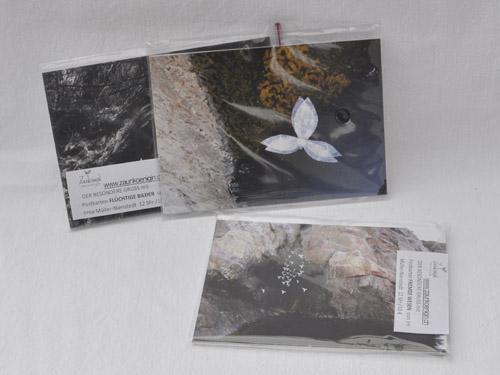 Postkartensets Zaunkoenigin