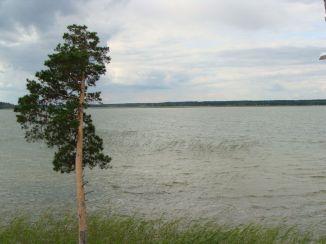 озеро окуневское - светлана кузнецова 1