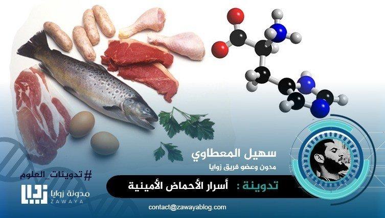 أسرار الأحماض الأمينية