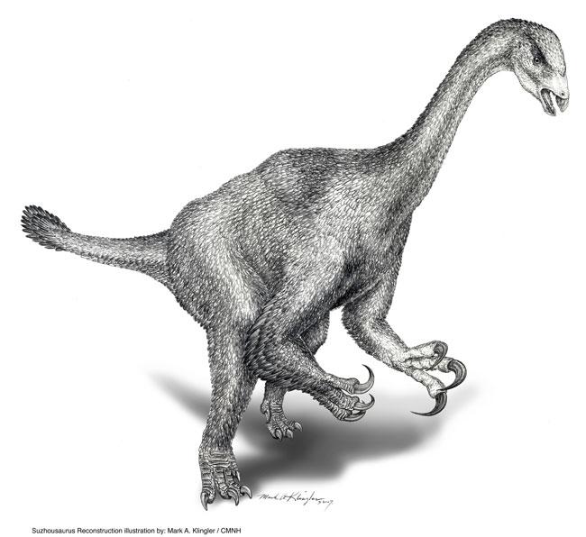 suzhousaurus.jpg
