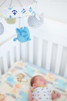 Newborn Lifestyle Session (8)