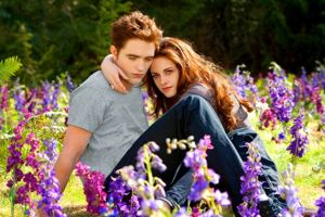 'Twilight: Breaking Dawn' to be released in IMAX internationally