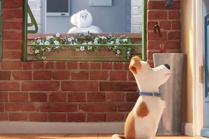 Watch the new Secret Life of Pets trailer!