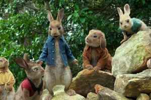 Peter-Rabbit-Trailer