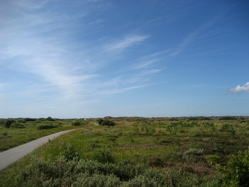 Weg durch die Dünen südl. v. Skagen
