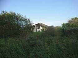 Ferienhaus versteckt im Gebüsch