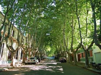 Chcę takie ulice w Polsce!