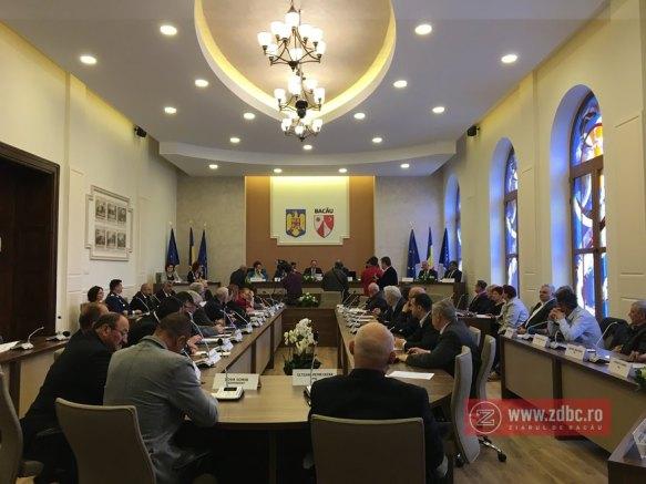 consiliul judetean aerostar bacau (28)