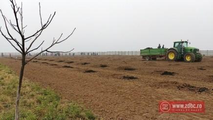 plantare pomi barrier electric plus bacau (8)
