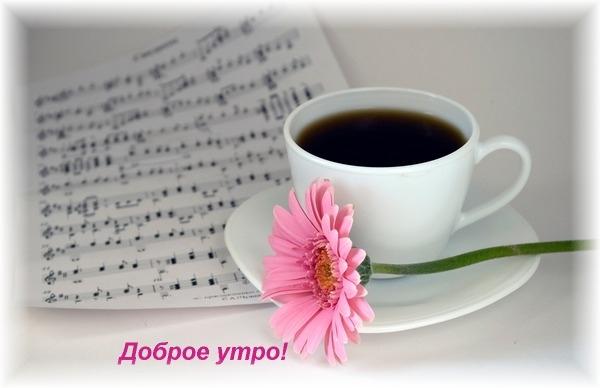 Доброе утро Картинки про утро, бесплатные Картинки про ...