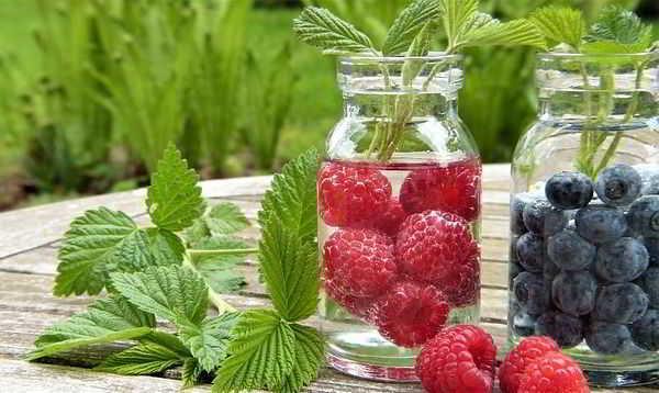 Витамины и антивитамины. фото
