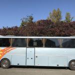 Autobus Bova Star Futura společnosti Honzíkovy busy. Foto: Jan Širc