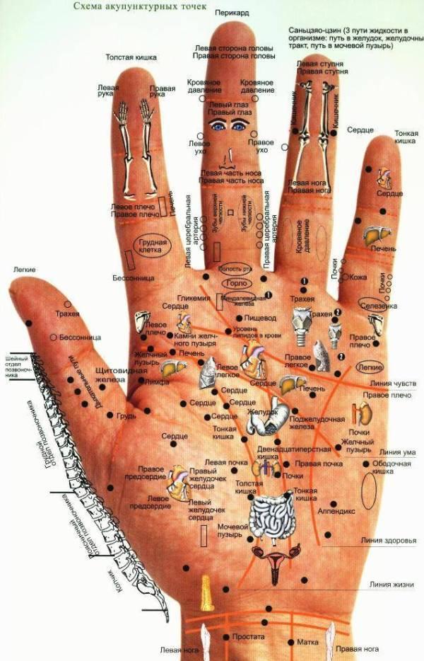 Точечный массаж уникальный восточный метод лечения