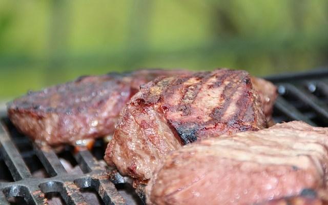 Paleolitická dieta