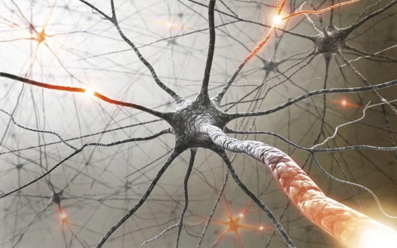 simpromi mutiple skleroze