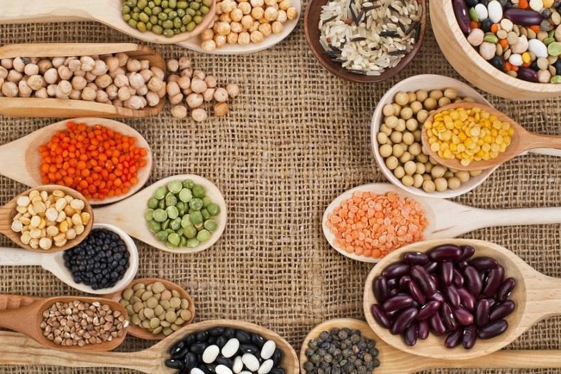 proteini biljnog porijekla