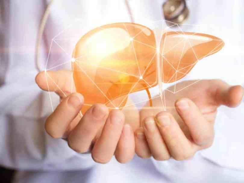 regeneracija jetre